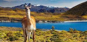 Kelionė Tolimoji Čilė