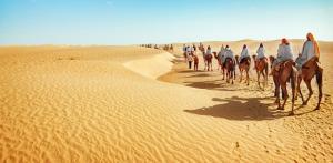 Kelionė Istorinis Tunisas... Sacharos link