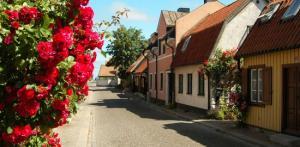 Kelionė Atrask vikingų salą - Gotlandą 6d.