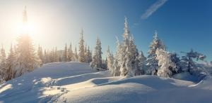 Kelionė Kelionė į Laplandiją pas Kalėdų senelį (N.Metai) 6d.