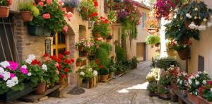Kelionė Poilsis prie Adrijos jūros – neatrastoji Umbrija (pažintinė - poilsinė)