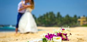 Kelionė Egzotiškos vestuvės Šri Lankoje