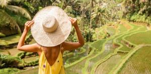 Kelionė Pažintis ir poilsis Balio saloje (su lietuviškai kalbančiu vadovu)