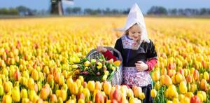 Kelionė Gražiausių Europos sodų spalvos. Olandija – Vokietija 5 d./4 n.
