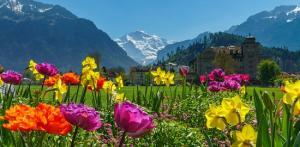 Kelionė Nepakartojamas savaitgalis Saksonijos Šveicarijoje 3 d./2 n.