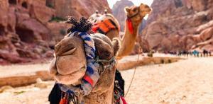 Kelionė Jordanija per savaitgalį
