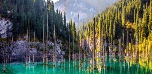Kelionė Laukinės gamtos stebuklai Kazachstane