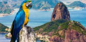 Kelionė Kruizas Pietų Amerikoje, turas Rio de Žaneire bei Igvasu kriokliai (su lietuviškai kalbančiu vadovu)