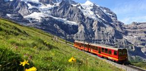 Kelionė Šveicarija ir Austrija