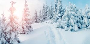 Kelionė Naujieji metai Laplandijoje