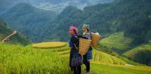 Kelionė Šiaurinis ir centrinis Vietnamas
