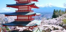 Kelionė Japonija: sakurų žydėjimas