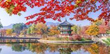 Kelionė Pietų Korėja. Hipnotizuojančios gamtos ir istorijos paletė