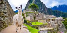 Kelionė Ekvadoras su Galapagų salomis ir didingasis Peru