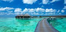 Kelionė Stebuklingoji Šri Lanka ir poilsis Maldyvuose
