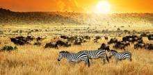 Kelionė Kenija. Poilsinės kelionės iš Varšuvos