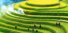 Kelionė Visas Vietnamas su poilsiu (keliaujant individualiai)