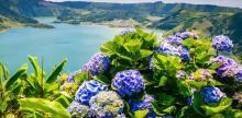 Kelionė Lisabona ir poilsis Azorų salose