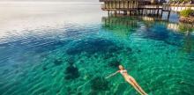 Kelionė Prancūzų Polinezija: Taitis, Moorea ir Bora Bora