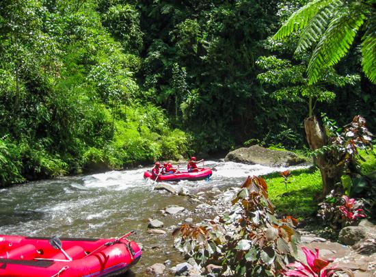 Balis aktyviai