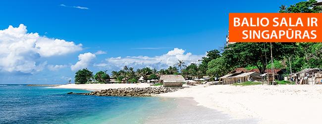 Savarankiškos kelionės idėja!  Egzotiškasis Balis bei modernusis Azijos didmiestis – Singapūras! 16 dienų egzotinė kelionė su skrydžiais ir nakvynėmis - tik 1285 EUR! Kelionės data: 2018 m. gegužės 11 d. Liko tik 2 vietos!