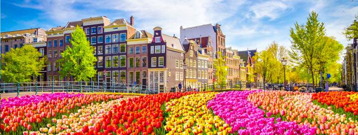 Įspūdingasis gėlių žydėjimas Olandijoje! 5 dienų kelionė autobusu su pusryčiais – nuo 314 EUR! Išvykimas: 2020 m. gegužės 1 d.
