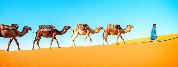 Pažinkite neatrastąjį Maroką! Kerintys Maroko miestai su poilsiu Suvairoje ir lietuviškai kalbančiu vadovu - nuo 795 EUR  + skrydis! Kelionės data: 2020m. kovo 21 d.