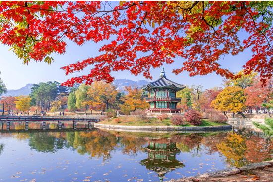 Pietų Korėja. Hipnotizuojančios gamtos ir istorijos paletė