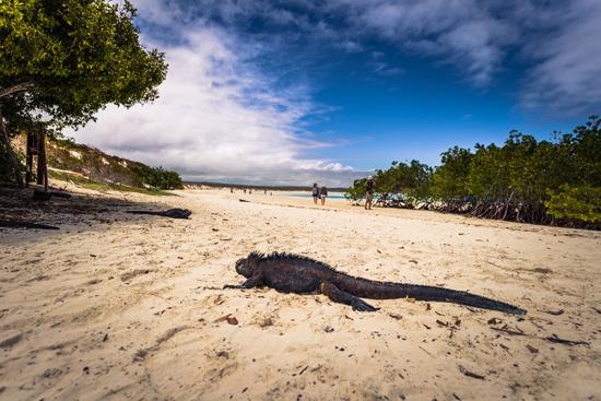 Ekvadoras su Galapagų salomis