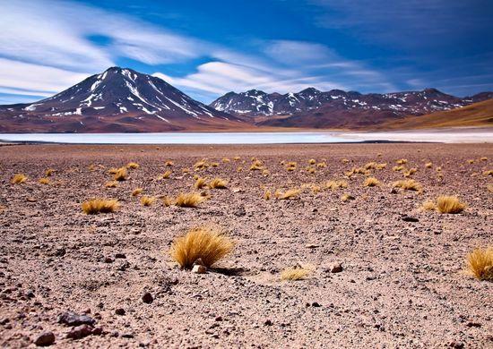 Neatrastoji Čilė