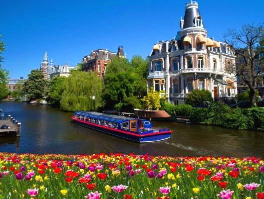Pavasarinis gėlių žydėjimas Olandijoje