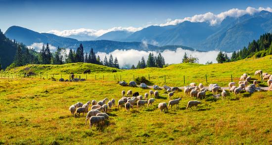 Slovėnijos ir Austrijos Alpės 6d.
