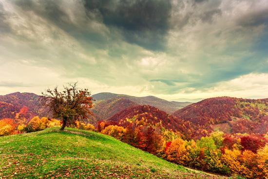 Kalnuotoji Rumunija – paslaptingas Transilvanijos pasaulis (8 d.)