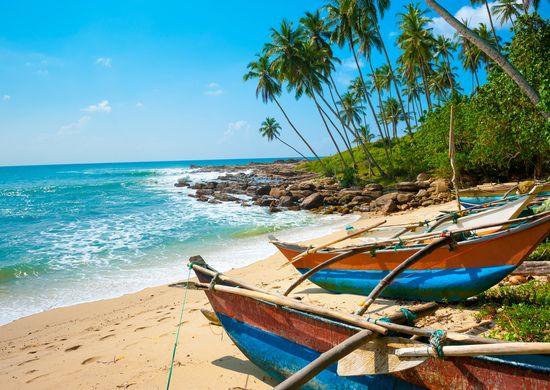 Šri Lanka: Rojaus sala