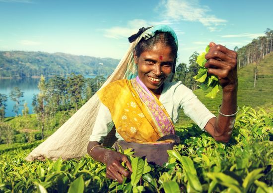 Egzotiškoji Šri Lanka