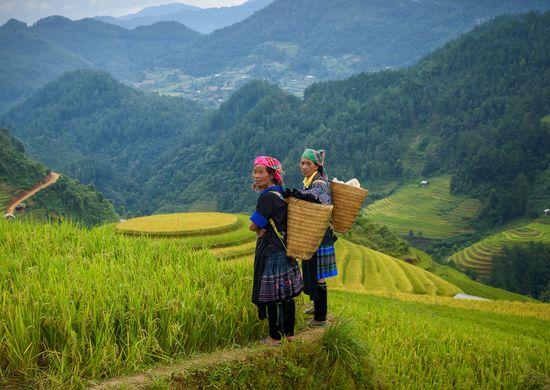 Šiaurinis ir centrinis Vietnamas (keliaujant individualiai)