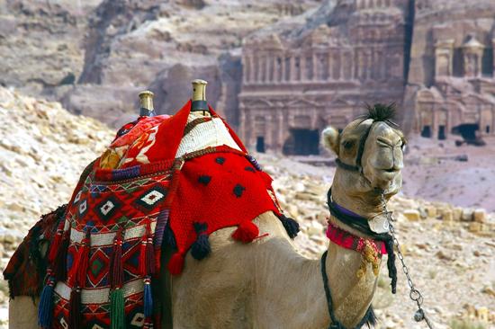 Imperatoriškieji Maroko miestai (keliaujant individualiai)