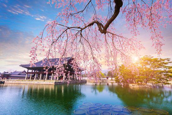 Pietų Korėja – neatrastas Azijos perlas (su vadovu iš Lietuvos)