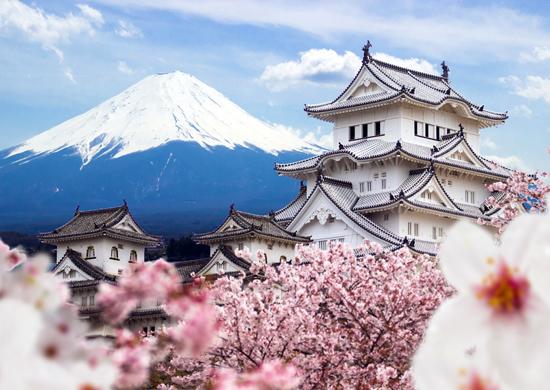 Japonija sakurų žydėjimo metu (su vadovu iš Lietuvos)