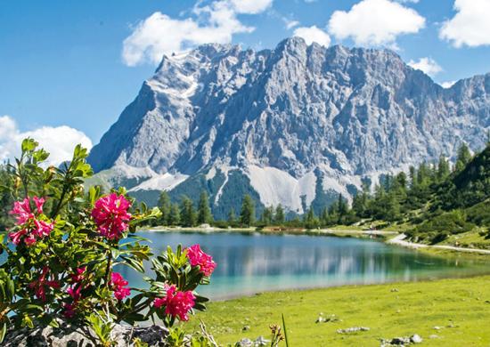 Vokietijos, Austrijos Alpės, Bavarija ir gurkšnelis Šveicarijos..aktyvus poilsis kalnuose