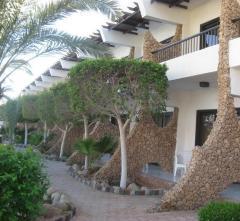 TURQUOISE BEACH HOTEL,  Egiptas, Sharm El Sheichas