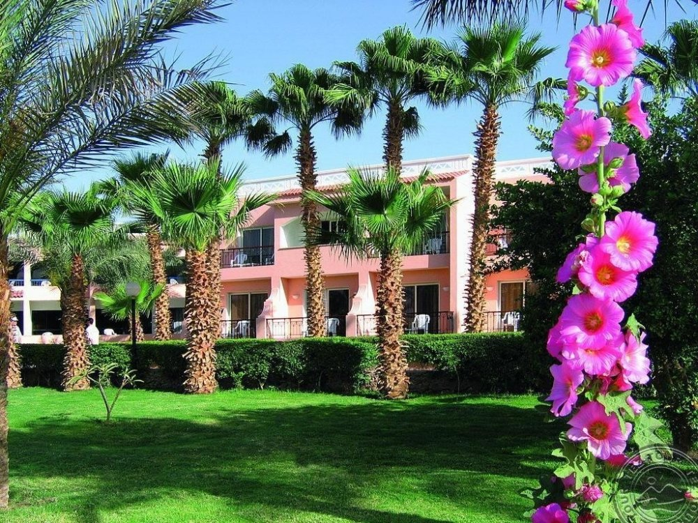 BEACH ALBATROS RESORT HURGHADA 4* hotel viešbutis (Egiptas, Hurgada)