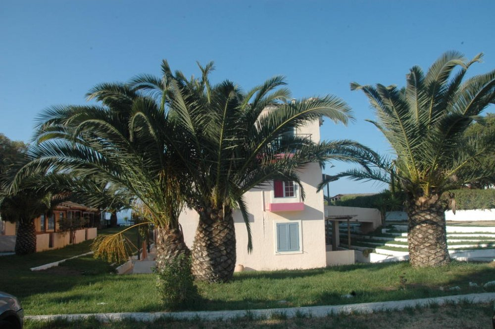 KORALLI BEACH